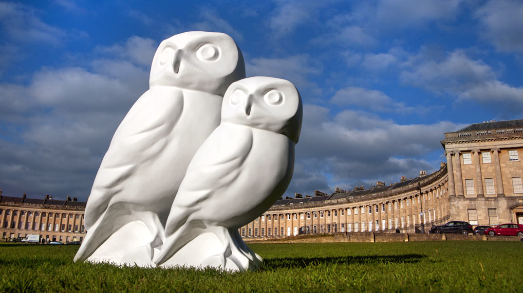 From hatching to flight – the incredible journey of a Minerva's Owl sculpture