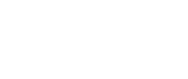 Minerva's Owls Bath Sculpture Trail