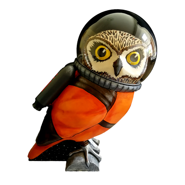Cosmos the Owlstranaut