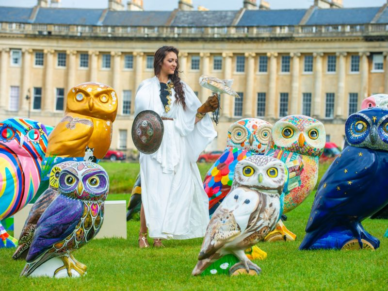 Minerva's Owls of Bath Sculptures Unveiled