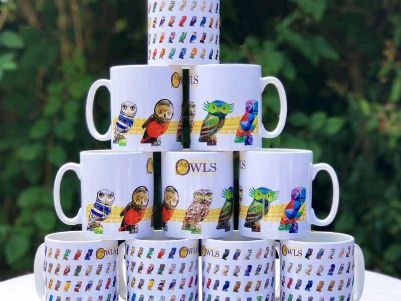 Minerva's Owls Merchandise Set to Fly Off the Shelves