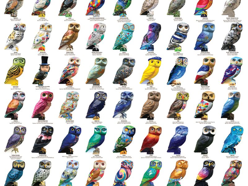 Owls of Bath Posters now on sale
