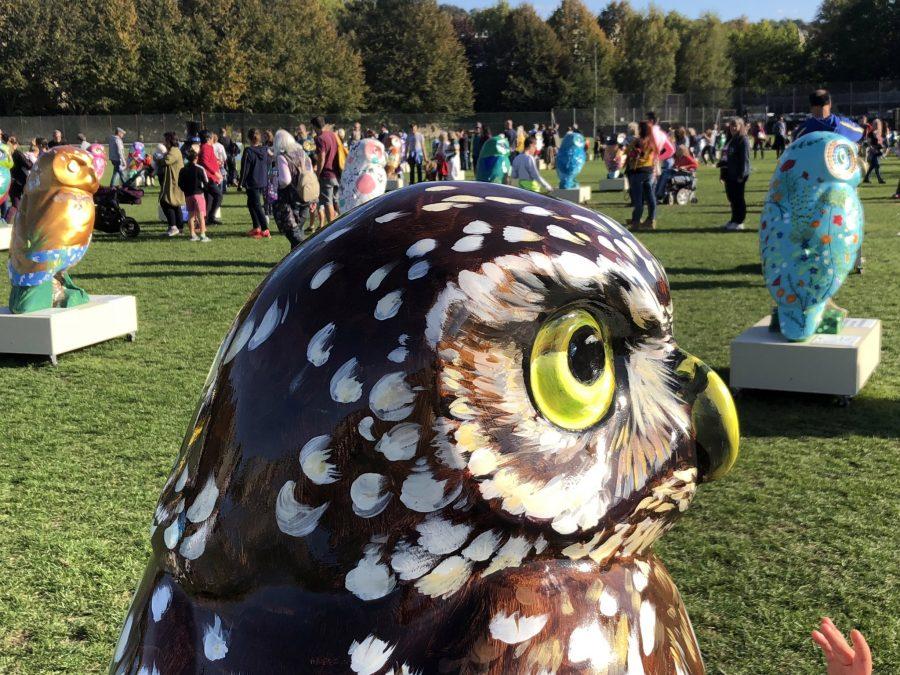 Sun shines on Owls Hoot Farewell
