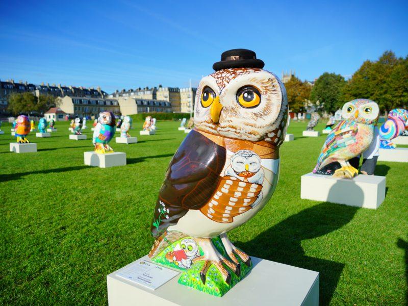 Owls Hoot Farewell video