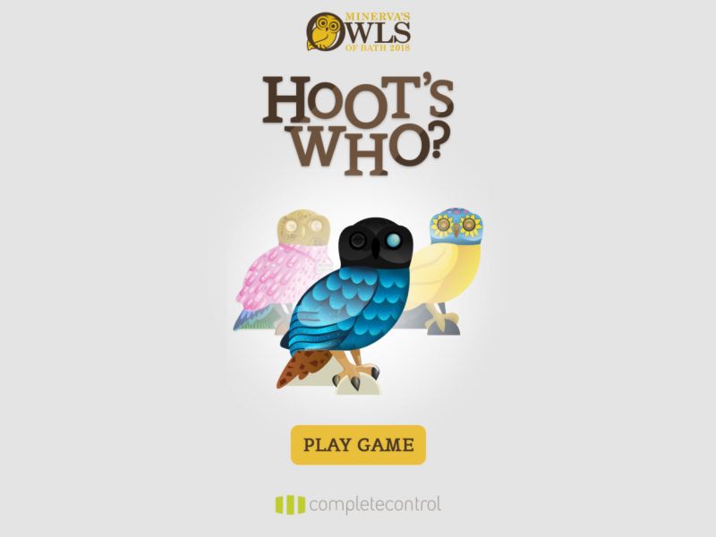 Hoot's Who?  Amazing online Owls of Bath game!