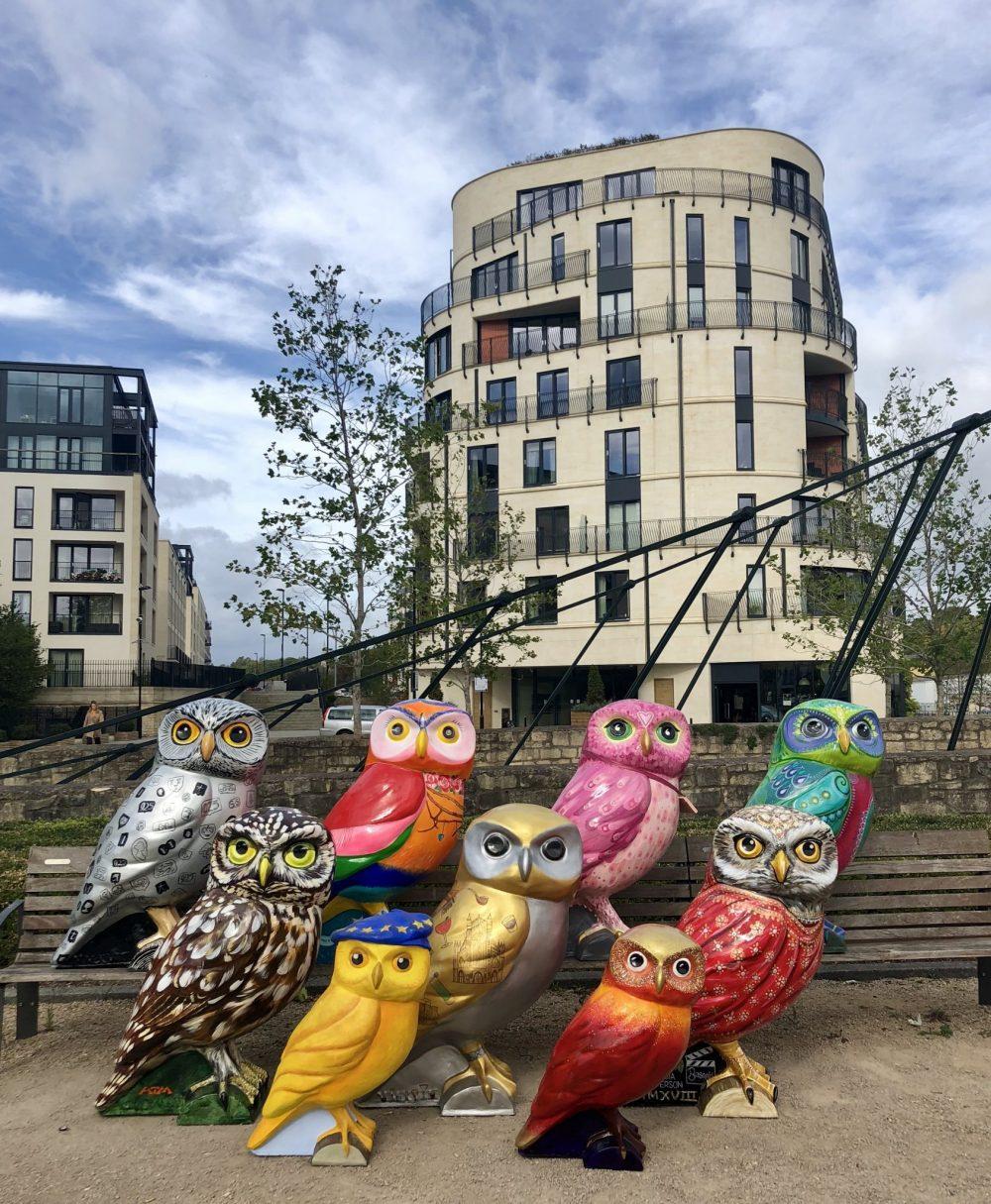 Owls nesting at new Bath Riverside HQ
