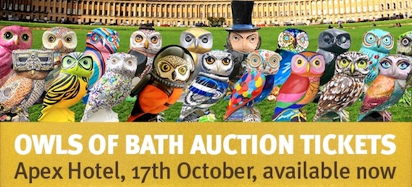 Owls of Bath Auction – this Wednesday!